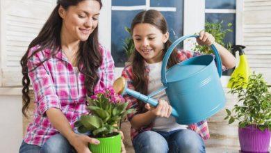 Photo of 8 تطبيقات تساعدك على الزراعة المنزلية وتجميل حديقتك