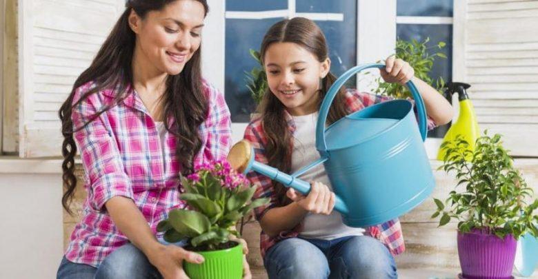 8 تطبيقات تساعدك على الزراعة المنزلية وتجميل حديقتك