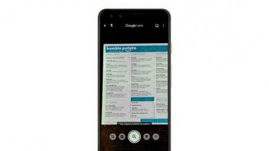 """""""جوجل"""" تطلق ميزة ترجمة قوائم الطعام واللافتات الطرقية في Lens"""