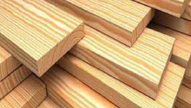Photo of الخشب الشفاف قد يحل محل الزجاج يومًا ما